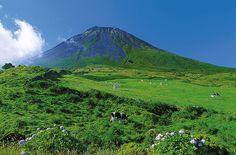 Azoren natürlich belebend! Natur- und Aktivreise von OLIMAR Reisen.  Entdecken Sie mit uns die Azoren aktiv! Bringen Sie ihren Körper auf Wanderungen und Radtouren durch grüne Vulkanlandschaften in Schwung. Erleben Sie Vulkanismus live, während Sie in heißen Quellen baden. Bestaunen Sie Wale und Delfine...