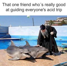 That One Friend Who's Really Good At Guiding Everyone's Acid Trip - Funny Memes. The Funniest Memes worldwide for Birthdays, School, Cats, and Dank Memes - Meme Funny Adult Memes, Adult Humor, Funny Jokes, Hilarious, Funny Shit, Funny Stuff, Memes Humor, Acid Trip, Monday Memes
