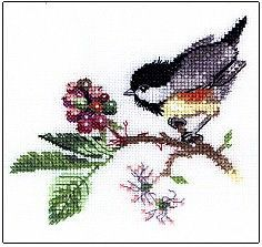 Valerie Pfeiffer Birds Cross Stitch