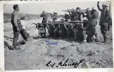 fusilamiento realizado por las tropas nacionales contra dos combatientes republicanos, en una zona próxima a la localidad oscense de Almudévar, muy cerca de Huesca, llamada Los Pintanos.