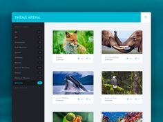 Browse Theme by Umar Irshad