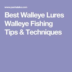 Best Walleye Lures Walleye Fishing Tips & Techniques Best Walleye Lures, Walleye Fishing Tips, Bass Fishing Lures, Fishing Knots, Walleye Bait, Catfish Fishing, Diy Fishing Bait, Best Fishing, Fishing Tackle