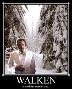 Funny pictures about Walken in a Winter Wonderland. Oh, and cool pics about Walken in a Winter Wonderland. Also, Walken in a Winter Wonderland. Merry Christmas, Christmas Humor, Christmas Stuff, Christmas Time, White Christmas, Christmas Ideas, Christmas Music, Funny Christmas Memes, Christmas Cards