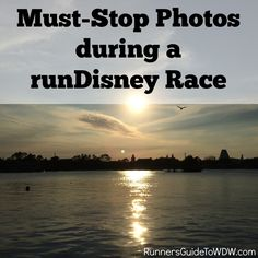 Must-Stop Photos during a runDisney Race http://www.runnersguidetowdw.com/must-stop-photos-during-a-rundisney-race/