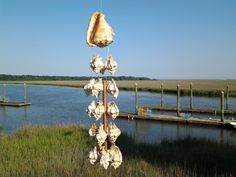 Apple Murex Shells hanging from Cameo Helmet Shell - Wind Chime by ConniesChimes on Etsy