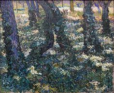 """Undergrowth with Ivy 1889. Van Gogh explored the grounds of the asylum where he found an overgrown garden. He wrote, """"since I have been here, I have had enough work with the overgrown garden with its large pine trees, under which there grows tall and poorly-tended grass, mixed with all kinds of periwinkle."""" The painting is of growth below ivy covered trees, with small brushstrokes to create a blurred image that also shows the effect of light shining through the shaded trees."""