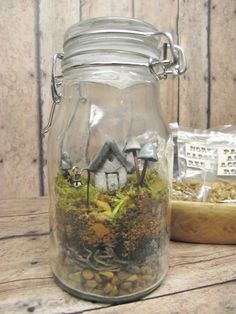 Stacked with rocks and moss to get proper height of container. Terrarium Kit With Tiny House, Glow in the Dark Mushrooms and Lantern Live moss Mini Terrarium, Garden Terrarium, Terrarium Kits, Succulent Terrarium, Air Plants, Indoor Plants, Pot Jardin, Creation Deco, Fairy Houses