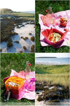 told me when I mentioned I wanted to have a picnic at the beach on Sunday. Fall Picnic, Picnic Time, Beach Picnic, Summer Picnic, D Day, Happy Moments, Autumn Trees, Simple Pleasures, Fresco