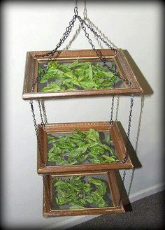 upcycle herb dryer