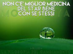 Pillole di Benessere #13... #Metamorphosya #glleb #salute #benessere #sestessi #lafilosofiadelcambiamento #pilloledibenessere