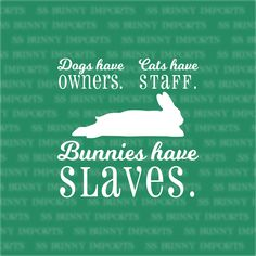 Dogs have owners, Cats have staff, Bunnies have slaves decal