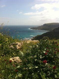 bottle-green15                                        #gozosegway #gozo #segway #malta #holidays #tour #adventure #eco #fun #nature #segwayview #gozoseeing #summer #sea #sun #peaceandlove #ride #cool #challenge #balance