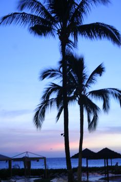 On the beach in Hawaii....My home