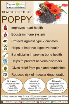 Some of the most important health benefits of poppy include its ability to boost the immune system, protect heart health, improve vision, increase blood flow, optimize digestion, strengthen the bones, regulate the nervous system, increase eye health, and prevent Type 2 diabetes.