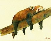"ORIGINAL-Lesser Panda Red Panda Red Cat Bear art wall bear love wild painting animal 11x8"" -art original Watercolor painting by Juan bosco"