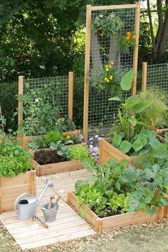 Hochbeet Idee: Hochbeete in verschiedenen Höhen mit Rankgitter. Ideal für kleine Gärten.