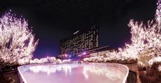 In addition to its own ice skating rink, Grand Hyatt Seoul offers a spa, indoor/outdoor pools, and tennis and squash courts.