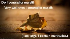 do i contradict myself? very well then i contradict myself; (i am large, i contain multitudes.)—walt whitman