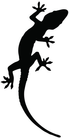45 Best Cartoon Lizard Outline Tattoo images in 2017