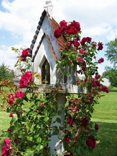A majestic bird feeder acts as a trellis for climbing roses.