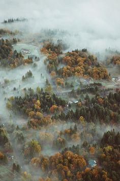 brouillard, paysage, brume, nature, Voyage