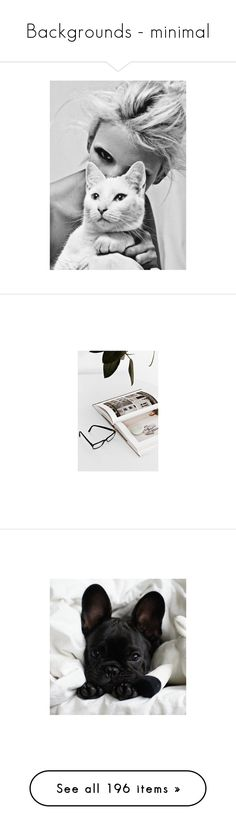 """""""Backgrounds - minimal"""" by namelif ❤ liked on Polyvore featuring minimal, Minimalist, minimalism, Backgrounds, photo, animals, backgrounds, pictures, photos and icons"""