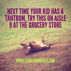 We thought this might be a good one to try when you need to regulate your foster or #adopted kiddo.  Meet them where they're at! #horse #quotes #parenting #foster #adopt #nonprofit