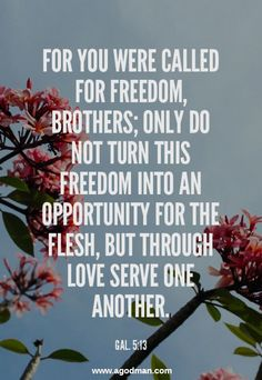 Gal. 5:13 For you were called for freedom, brothers; only do not turn this freedom into an opportunity for the flesh, but through love serve one another. #Bible #Scripture verse, Recovery Version, quoted at www.agodman.com
