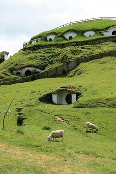 Matamata, New Zeland.... A whole hobbit neighborhood!! When can I move in?
