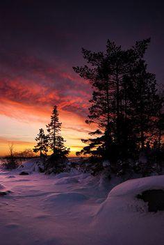 Vinter i Sverige, Västerbotten
