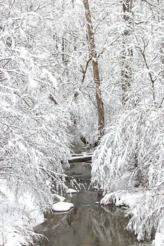 Discover North Carolina | #northcarolina #photo #photograph #photography #photographer