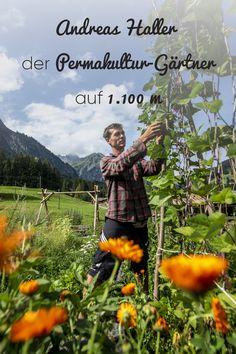 Mit seinem Konzept setzt er auf naturnahe Kreisläufe zur Erzeugung von Lebensmitteln. #kleinwalsertal #visitvorarlberg Andreas, All Over The World, Herbs, Explore, Up, Movie Posters, Pictures, Painting, Gardens