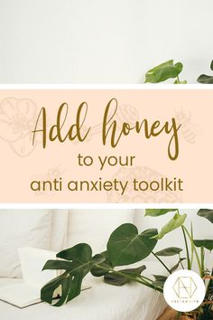 Feeling anxious is common place for many people but it's not common knowledge that honey can help with it. Great for gut health, honey provides prebiotic fibre to support the good bacteria that live there. Good gut health is linked to good mental health. Want to know more? Head over to the blog, and sign up to the newsletter to receive 20% off your first purchase.  #luxuryhoney #jarrahhoney #redgumhoney  #nectahive #anxiety  #anitmicriobialhoney #healinghoney Good Mental Health, Gut Health, Health And Wellbeing, Anxiety Causes, Anxiety Help, Australian Honey, Honey Benefits, Generalized Anxiety Disorder, Best Honey