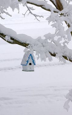 Little blue snow covered bird house!*****Follow our unique garden themed boards ... See even more by going to the image link