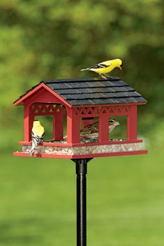 Covered Bridge Bird Feeder | Red Bird Feeder | Platform Feeder -- from Gardeners.com