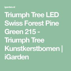 Triumph Tree LED Swiss Forest Pine Green 215 - Triumph Tree Kunstkerstbomen | iGarden