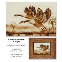 Canadian Geese Woodburned Birch Gallery Page 2: Pyrography Illustrations by Cate McCauley