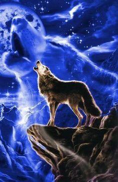 """""""Sou um lobo solitário que ama o luar mesmo sabendo que este é um amor impossível."""""""