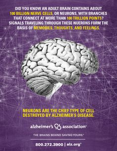 Your brain contains more than 100 billion nerve cells. Signals traveling through these cells form the basis of memories, thoughts and feelings. Alzheimer's disease destroys these nerve cells. Everyone is at risk, even you! Join the fight to END Alzheimer's: www.alz.org/abam