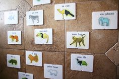 Miles Storm love his animal Splashimal flash cards for the shower!
