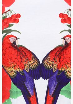 Red-macaw print
