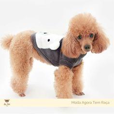 Sweater Ursinho - Sr. Pet Boutique - 2