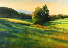 "Contemporary Painting - ""Ware's Field Evening Light"" (Original Art from Marianna McDonald)"
