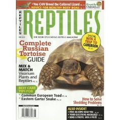 care guide sheet for your horsefield russian tortoise