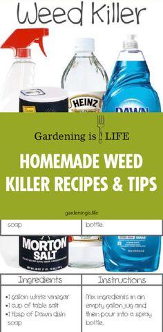 50 best homemade weed killers images christmas decor dekoration rh pinterest com