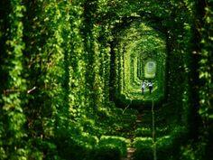 Lugares solitarios más bellos del mundo  - Cultura Colectiva