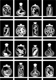 Curiosity Cabinet Series 3, No. 4 - Limited Edition Screenprint  via Etsy.