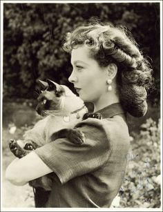 Vivian Leigh with siamese cat, funny how my favourite actress had the same cat I did. Miss you willey<3