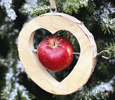 Tips for green Christmas. Celebrate Christmas in an environmentally friendly way. Tips for green Christmas. Celebrate Christmas in an environmentally friendly way. Green Christmas, Christmas Time, Christmas Crafts, Thanksgiving Crafts, Outdoor Christmas, Halloween Crafts, Outside Christmas Decorations, Tree Decorations, Wood Crafts