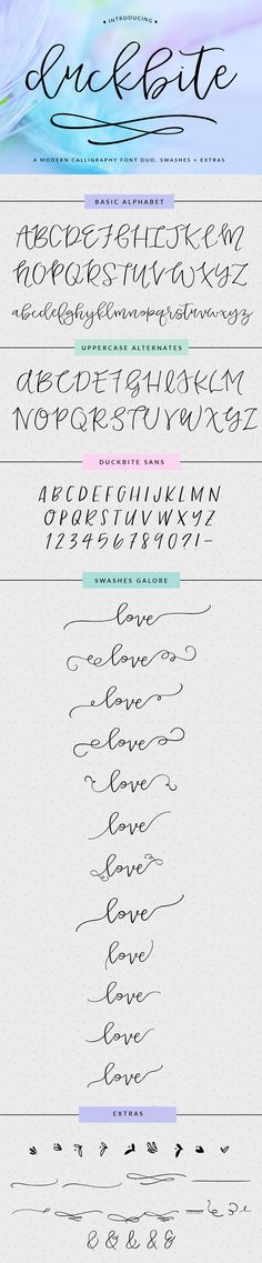 Meet Duckbite, a Modern Swash Calligraphy Font With Swashes, Extras, and Modern Vibes. You'll Love It!